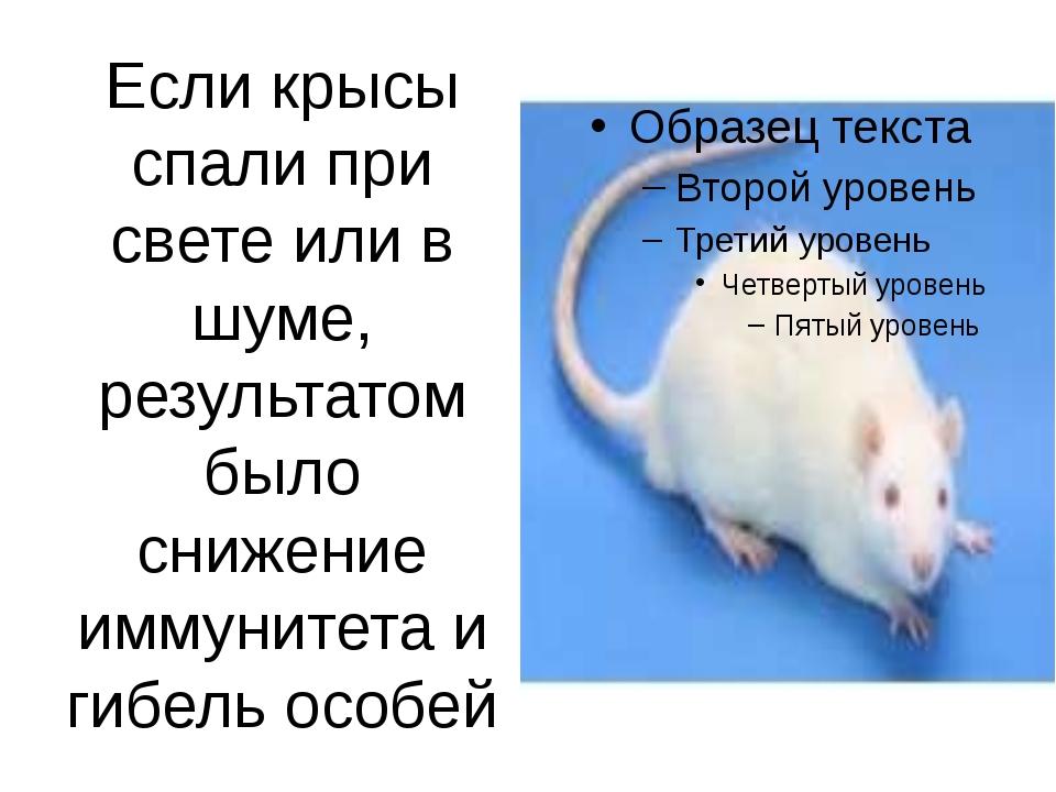 Если крысы спали при свете или в шуме, результатом было снижение иммунитета и...