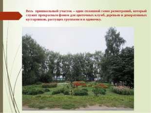 Весь пришкольный участок – один сплошной газон разнотравий, который служит пр