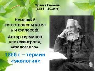 Эрнест Геккель (1834 – 1919 гг) Немецкий естествоиспытатель и философ. Автор