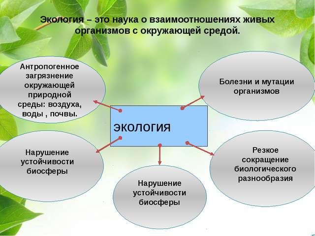 Экология – это наука о взаимоотношениях живых организмов с окружающей средой....
