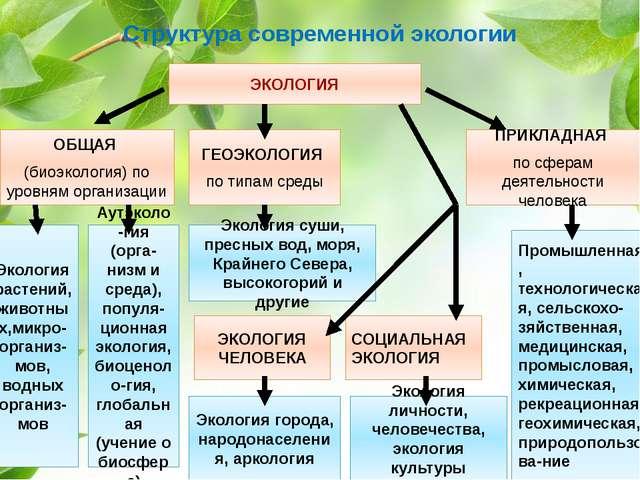 Структура современной экологии ОБЩАЯ (биоэкология) по уровням организации ГЕО...