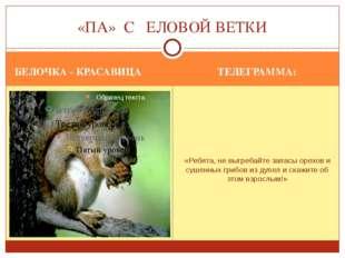 БЕЛОЧКА - КРАСАВИЦА ТЕЛЕГРАММА: «Ребята, не выгребайте запасы орехов и сушенн