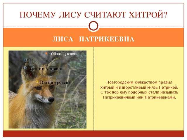 ЛИСА ПАТРИКЕЕВНА Новгородским княжеством правил хитрый и изворотливый князь П...