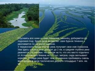 Спускаясь все ниже и ниже Амазонка, наконец, добирается до подножия Анд. Здес