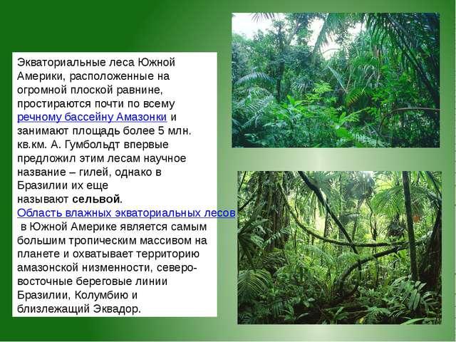 Экваториальные лесаЮжной Америки, расположенные на огромной плоской равнине,...