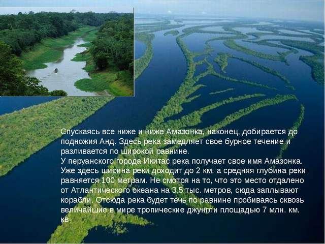 Спускаясь все ниже и ниже Амазонка, наконец, добирается до подножия Анд. Здес...
