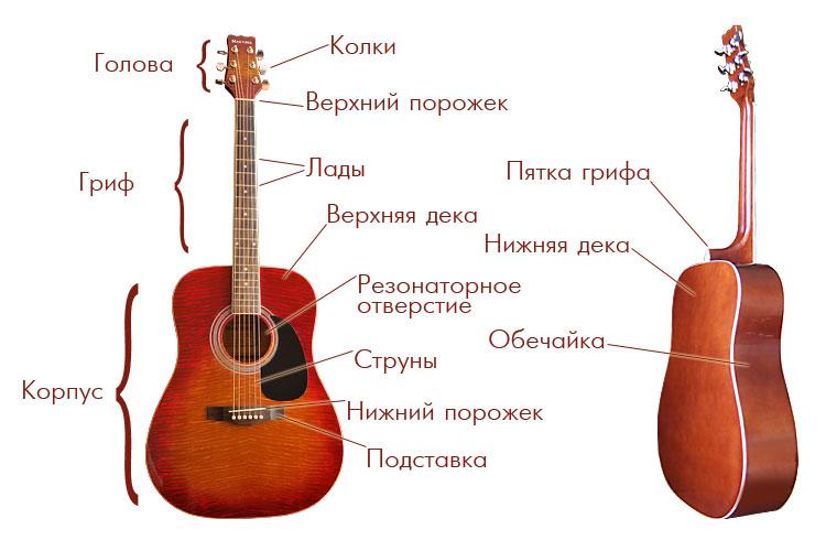 http://firstguitar.ru/uploads/posts/2010-07/1278239603_guitar_parts.jpg