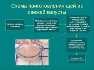 Схема приготовления щей из свежей капусты Капусту нарезать соломкой. Морковь,