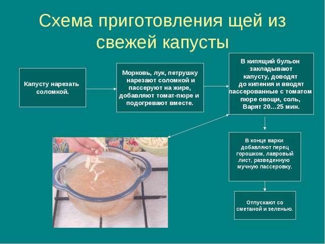 Схема приготовления щей из свежей капусты Капусту нарезать соломкой. Морковь,...
