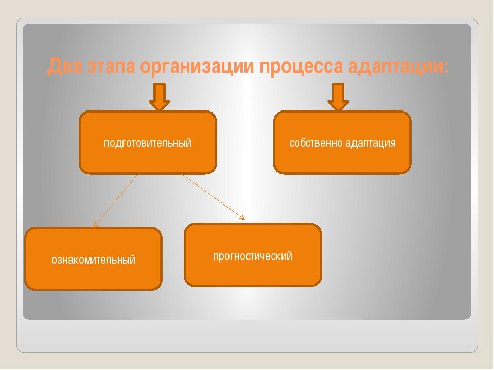 Два этапа организации процесса адаптации: подготовительный прогностический оз...
