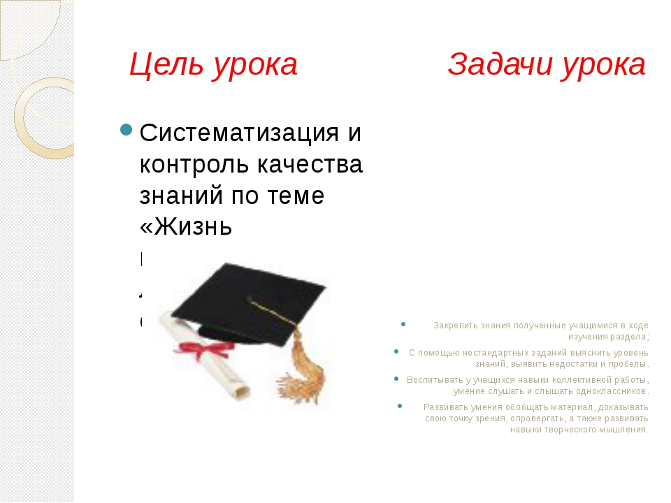 Цель урока Задачи урока Систематизация и контроль качества знаний по теме «Ж...