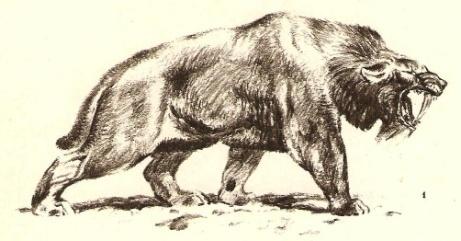 Охота 181