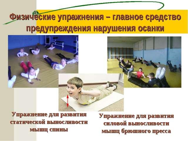 Физические упражнения – главное средство предупреждения нарушения осанки Упра...
