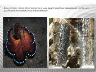В настоящее время известно более 2 млн. видов животных организмов. Среди них