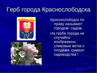 Герб города Краснослободска Кроснослободск по праву называют городом- садом.