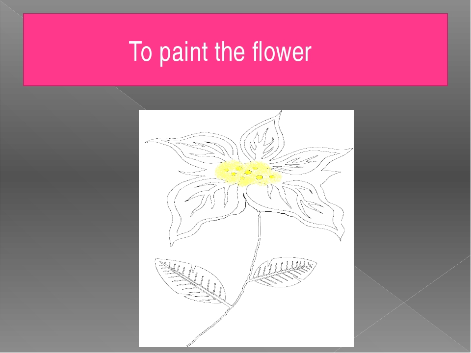 To paint the flower