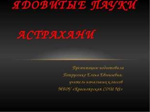 Презентацию подготовила Петрусенко Елена Евгеньевна, учитель начальных классо