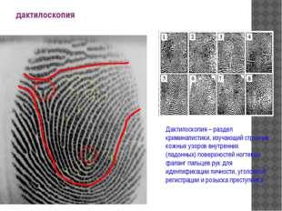 дактилоскопия Дактилоскопия – раздел криминалистики, изучающий строение кожны
