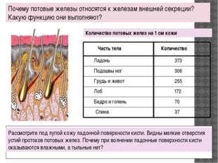 Почему потовые железы относятся к железам внешней секреции? Какую функцию он