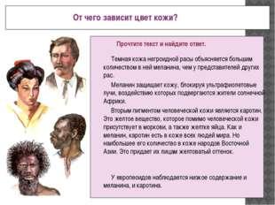 От чего зависит цвет кожи? Прочтите текст и найдите ответ. Темная кожа негро