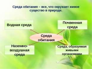 Среда обитания – все, что окружает живое существо в природе. Среда обитания В