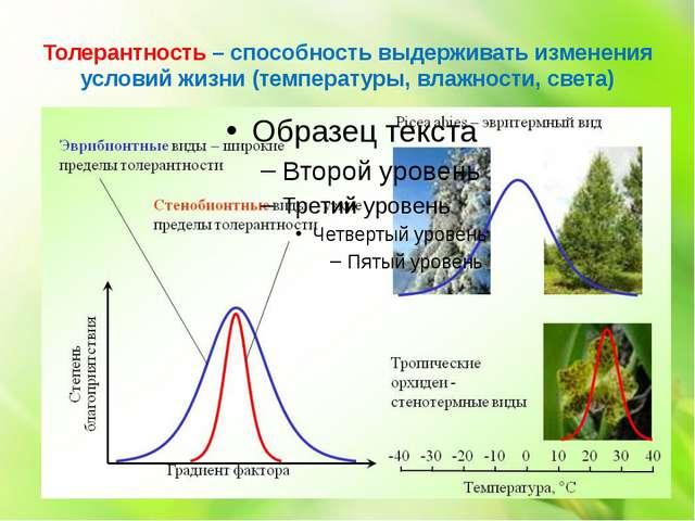 Толерантность – способность выдерживать изменения условий жизни (температуры,...