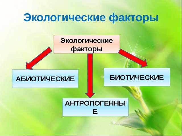 Экологические факторы Экологические факторы АБИОТИЧЕСКИЕ АНТРОПОГЕННЫЕ БИОТИЧ...