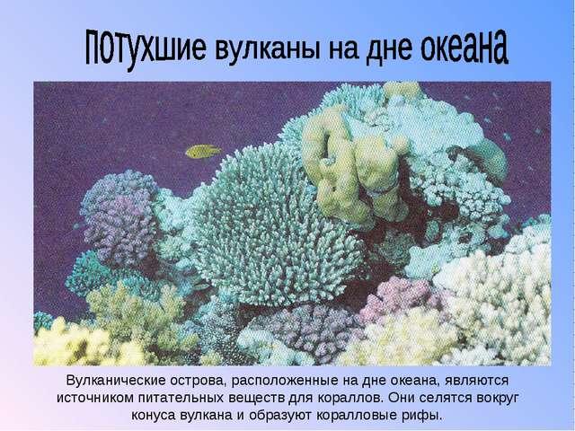 Вулканические острова, расположенные на дне океана, являются источником питат...