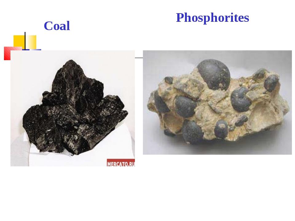 Phosphorites Coal