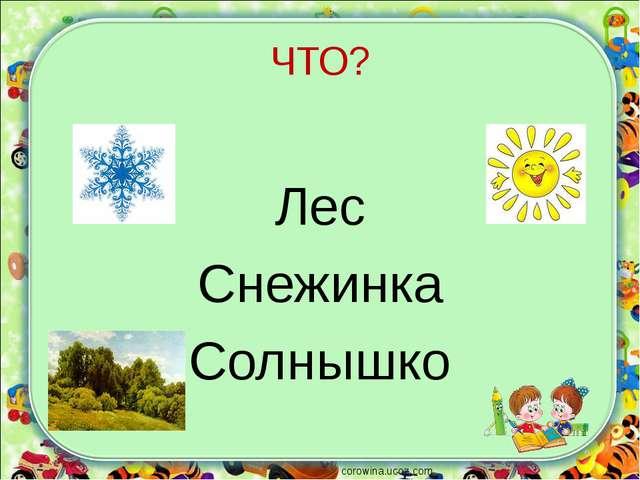 ЧТО? Лес Снежинка Солнышко corowina.ucoz.com