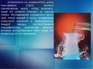 Антропологи из университета штата Нью-Джерси (США) провели сканирование мозга