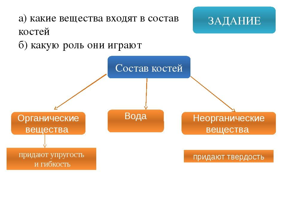 ЗАДАНИЕ а) какие вещества входят в состав костей б) какую роль они играют Сос...