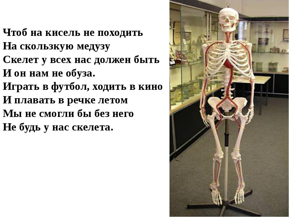 Чтоб на кисель не походить На скользкую медузу Скелет у всех нас должен быть...
