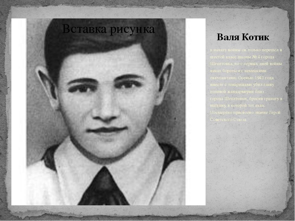 Валя Котик К началу войны он только перешёл в шестой класс школы №4 города Ш...