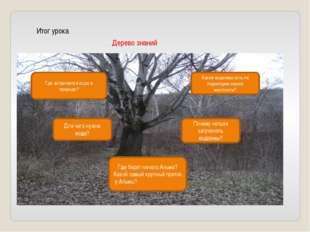 Итог урока Дерево знаний Какие водоемы есть на территории нашей местности? Гд