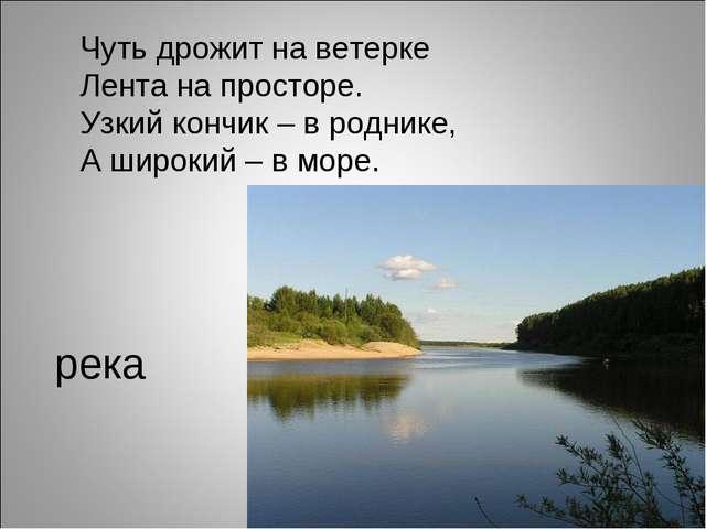 река Чуть дрожит на ветерке Лента на просторе. Узкий кончик – в роднике, А ши...