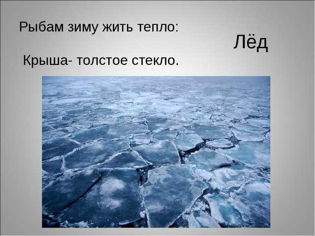 Лёд Рыбам зиму жить тепло: Крыша- толстое стекло.