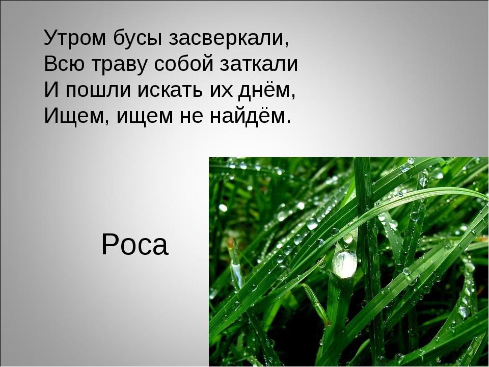 Роса Утром бусы засверкали, Всю траву собой заткали И пошли искать их днём, И...