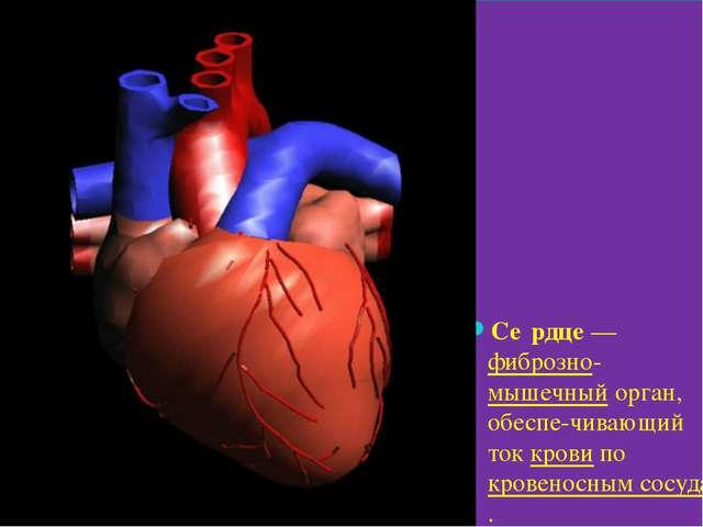 Се́рдце— фиброзно-мышечный орган, обеспе-чивающий ток крови по кровеносным...