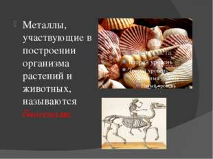 Металлы, участвующие в построении организма растений и животных, называются б