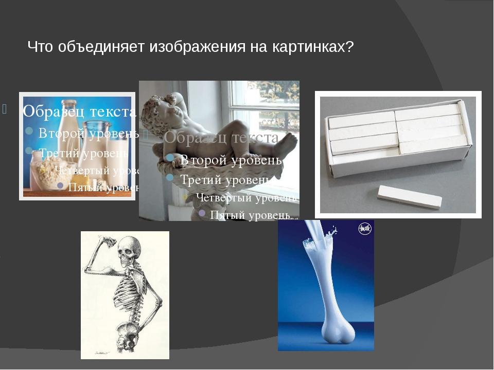 Что объединяет изображения на картинках?