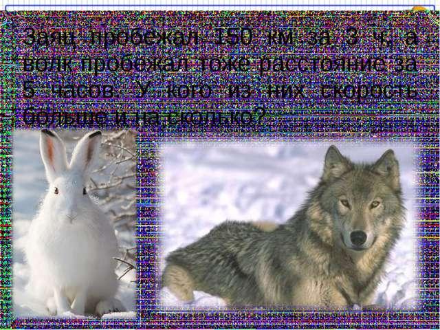 Заяц пробежал 150 км за 3 ч, а волк пробежал тоже расстояние за 5 часов. У ко...