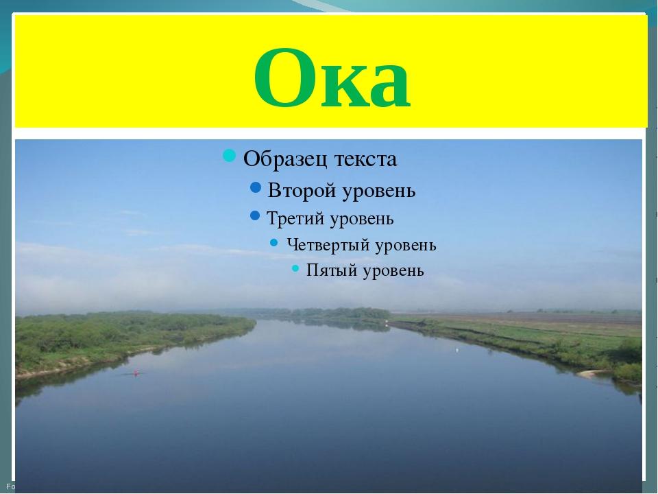 Ока FokinaLida.75@mail.ru