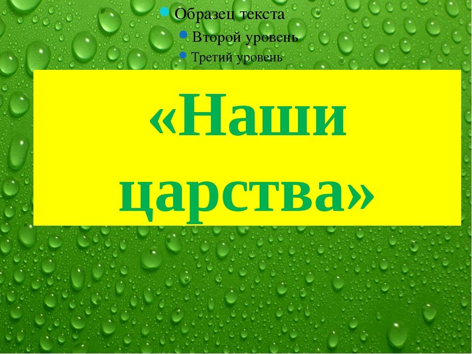 «Наши царства» FokinaLida.75@mail.ru