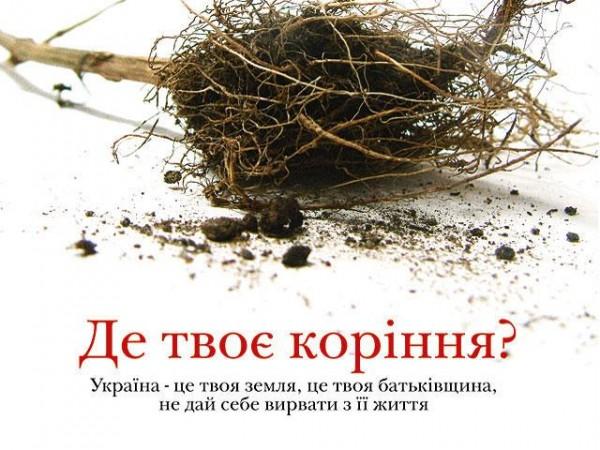 http://s39.radikal.ru/i084/1008/e1/cdbb58e9240b.jpg