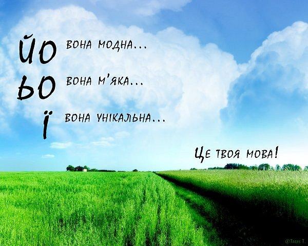 http://cs10005.vk.me/u51233452/105469168/x_95e61441.jpg