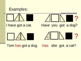 s s ? ? I have got a cat. Have you got a dog? Tom has got a dog. Has she got