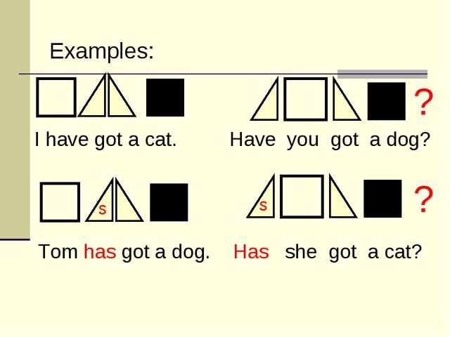 s s ? ? I have got a cat. Have you got a dog? Tom has got a dog. Has she got...