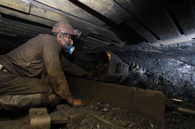 ДТЭК в 2010 году увеличил добычу угля на 9% - Экономика - zn.ua