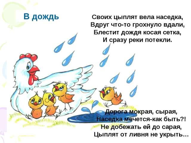 В дождь Своих цыплят вела наседка, Вдруг что-то грохнуло вдали, Блестит дождя...